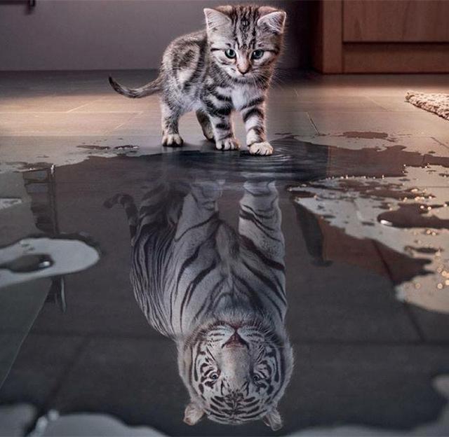 El Perfil Concepto-Self
